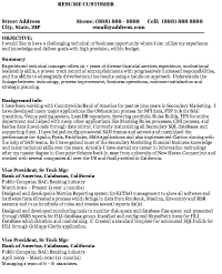 Great Before Version Of Resume, Sample Information Technology ... For Information Technology Resume