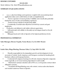 before version of resume sample sales resume